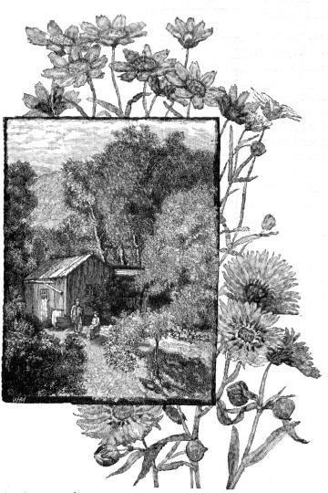john muir writings Vol 4: the writings of john muir  may 15, 2006 05/06 by muir, john, 1838-1914 badè, william frederic, 1871-1936 texts eye 1,121 favorite 4.