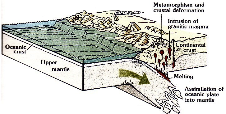 continental plate
